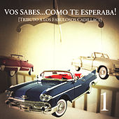 Play & Download Tributo A Los Fabulosos Cadillacs by Various Artists | Napster