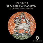 Play & Download Bach, J.S.: St. Matthew Passion by Eamonn Dougan | Napster
