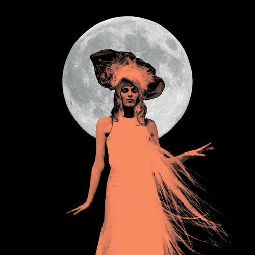 The Ghost Who Walks von Karen Elson