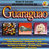 Play & Download Grandes Exitos by Los Guaraguao | Napster
