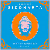 Play & Download Siddharta, Spirit of Buddha - Bar, Vol. 5: Budapest (by Ravin) by Various Artists | Napster