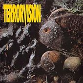 Formaldehyde by Terrorvision