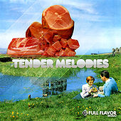 Play & Download Tender Melodies by Various Artists | Napster
