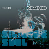 Silicone Soul Remixed by Silicone Soul