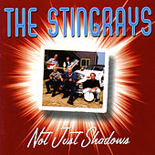 Play & Download Not Just Shadows by The Stingrays | Napster