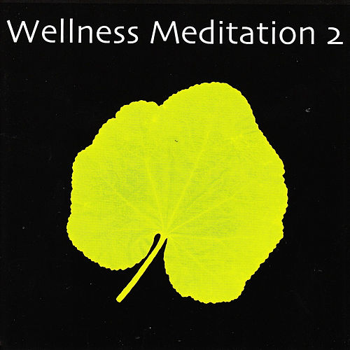 Play & Download Wellness Meditation 2 by Various Artists | Napster