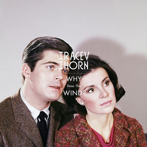 Play & Download Why Does the Wind? by Tracey Thorn | Napster