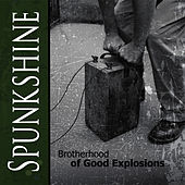 Play & Download Brotherhood of Good Explosions by Spunkshine | Napster