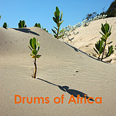 Play & Download Drums of Africa by Various Artists | Napster