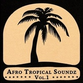Play & Download Afro Tropical Soundz Vol.1 by Various Artists | Napster
