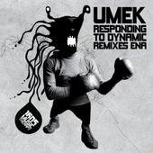 Responding To Dynamic Remixes Ena by Umek