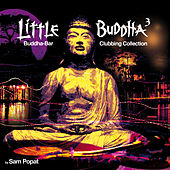 Play & Download Little Buddha 3 by Various Artists | Napster