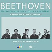 Play & Download Beethoven : Complete String Quintets by Endellion String Quartet | Napster