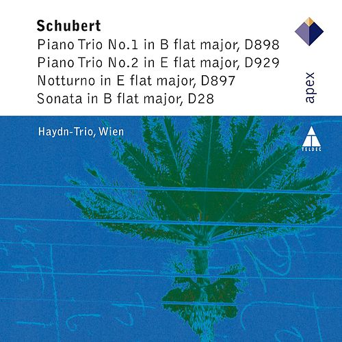 Schubert : The Piano Trios by Haydn Trio Wien