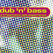 Play & Download Dub n' Bass - A Tripomatic Jazz Experience by Various Artists | Napster