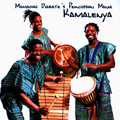 Mamadou Diabate's Percussion Mania: Kamalenya by Mamadou Diabate