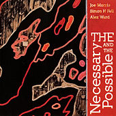 Play & Download The Necessary and the Possible by Joe Morris | Napster