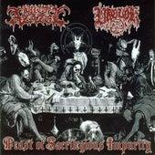 Feast of Sacrilegious Impurity by Various Artists