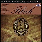 Play & Download Fibich:  Comenius, Zaboj, Slavoj and Ludek, Toman and the Wood Nymph, The Fall of Arkona by Prague Symphony Orchestra | Napster