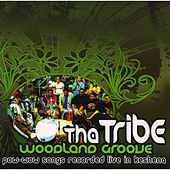 Play & Download Woodland Groove by Tha Tribe | Napster