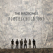 Play & Download Pieces (Hold On) - Single by The Birdsongs | Napster