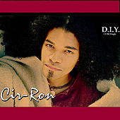 D.I.Y. ( Single ) by Cir-Ron
