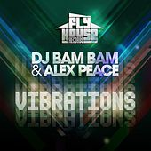 Play & Download Vibrations (Clean Album Version) by DJ Bam Bam   Napster