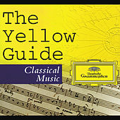 Play & Download The Yellow Guide To Classical Music by Various Artists | Napster