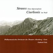 Play & Download Strauss: An Alpine Symphony - Ciurlionis: Miske by Gabriel Feltz | Napster