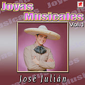 Play & Download Jose Julian Joyas Musicales, Vol. 1 - Te Conquistare by Felinos | Napster