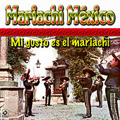 Mi Gusto Es El Mariachi by Mariachi Mexico