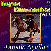 Play & Download Cantinas by Antonio Aguilar | Napster
