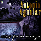 Play & Download Animas Que Amanezca by Antonio Aguilar | Napster