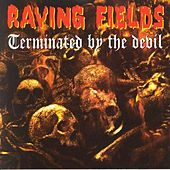 Raving Fields Terminated By The Devil Megamix by Various Artists