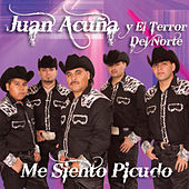 Play & Download Me Siento Picudo by Juan Acuña | Napster