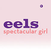 Spectacular Girl by Eels