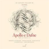 Handel: Italian Cantatas, Vol. 7 by Various Artists