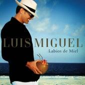 Labios de Miel by Luis Miguel