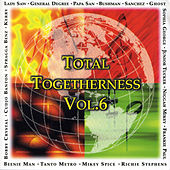 Total Togetherness Vol. 6 von Various Artists