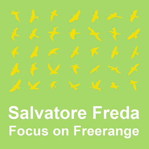 Play & Download Focus On : Freerange  Salvatore Freda by Various Artists | Napster