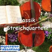 Classical String Quartet - Klassik Streichquartett by Various Artists
