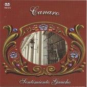Play & Download Sentimiento Gaucho - Canaro by Canaro | Napster