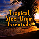 Play & Download Tropical Steel Drum Essentials by Island Steel Drum Players | Napster