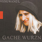 Play & Download Gache Wurzn by Georg Ringsgwandl | Napster