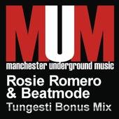Tungesti (Bonus Mix) by Rosie Romero