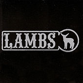 The Lambs by Lambs