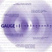 I by Gauge
