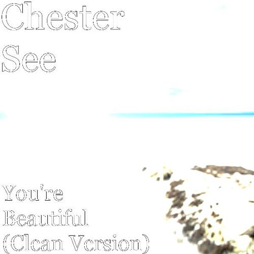You're Beautiful (Clean Version) by Chester See