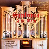 Play & Download Bach: Sinfonia by Joan Lippincott | Napster