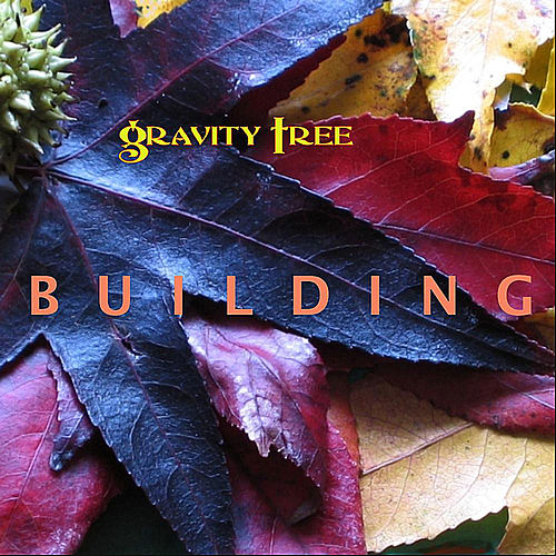 Building by Gravity Tree